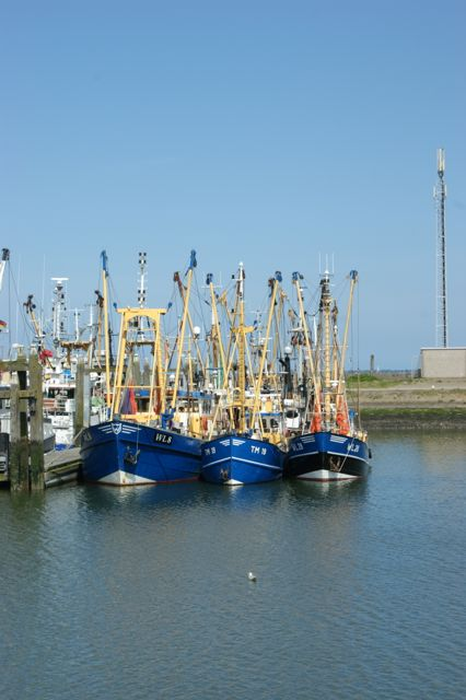 Afbeelding Visserijhaven Lauwersoog