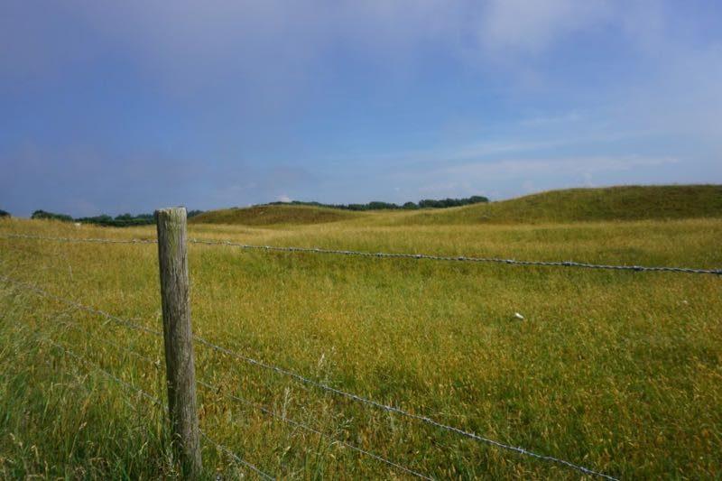 Het natuurgebied Westduinen bij Ouddorp