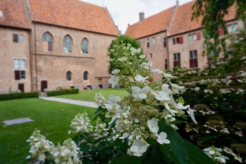 Het agnietenconvent vanuit de Kloostertuin in Elburg